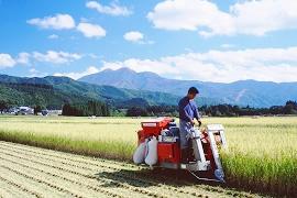 農地の相続に対する特例